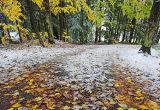 early-snow-horiz-grab.jpg