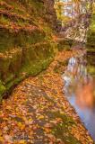 Autumns shelf