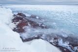 Icy boulder shoreline