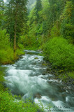 Oregonian flow