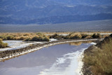 Flooded Saratoga Springs road in Death Valley