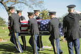 honor guard  salute.