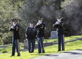 gun salute smoke