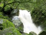 sugarloaf falls over green rocks