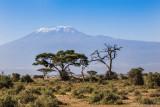 M4_10791 - Mt. Kilimanjaro, Tanzania