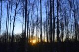 Winter Solstices Sunrise