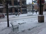 Spring in Colorado.jpg