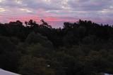 Autumn 7:33AM