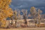 7551 Fall 2012