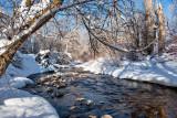 7990 Feb Snow