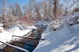 7991 Feb Snow
