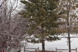 8039 big snow