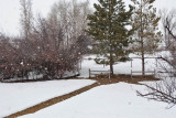 8043 big snow