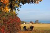 Autumn on Bornholm