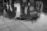 Rain and Reflections