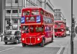 London213s3.jpg