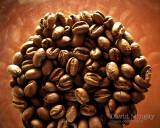 Mar 7: Beans