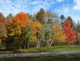 autumm_fall_season_2012