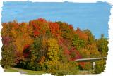 20121009 050 Fall Colours.jpg