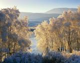 Winter Loch Achanalt