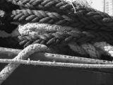 Ropes - Toronto Harbour.JPG
