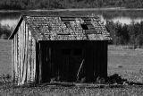 Old Shack in Alberta Foothills.jpg