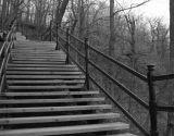 Stairway to Mt Royal - Montreal.JPG