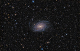 NGC6744 - Spiral Galaxy in Pavo