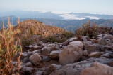 Vista desde la cima hacia territorio mexicano