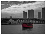 Miami Contrasts