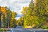 Forks Of Credit Road