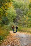Wilket Creek Park
