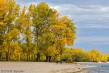 Cherry Beach, Lake Ontario