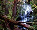 Waterfall at Moran State Park, Orcas Islands