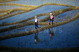 Yii ethnic minority farmers at QuanFuZhuang