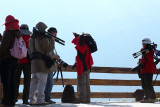 Photographers at HuangCaoLing