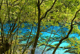 Five-Flower Lake (Aug 06)