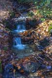 Stream in winter woods