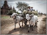 Epic Bagan