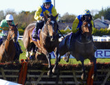 wexford_races_oct