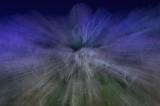DSC_1023_pb.jpg