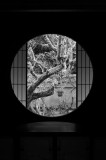 The Window of Enlightenment at Unryu-in Temple Kyoto