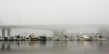 River City Marina in the Fog #1