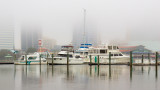 River City Marina in the Fog #2