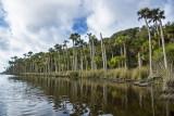 Guana Lake