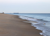 Low tide at Cape Henlopen