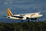 TIGER AIRWAYS AIRBUS A320 HBA RF 5K5A8664.jpg