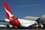 QANTAS AIRBUS A380 LAX RF IMG_8996.jpg