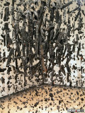 Mass (Colder Darker Matter), 1997