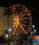 Ferris Wheel At The Pike